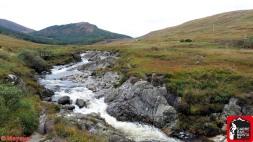 ultra trail scotland 2017 isle of arran (19)